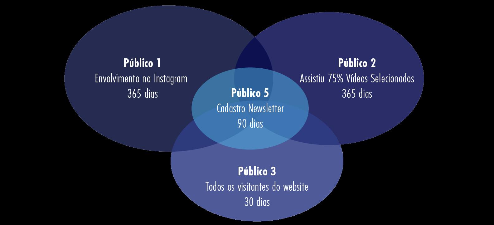 Diagrama 2 -Intersecção entre os públicos